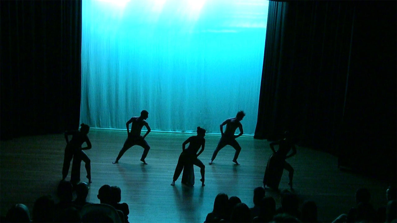 Dance auditions for DUTI dance company productions